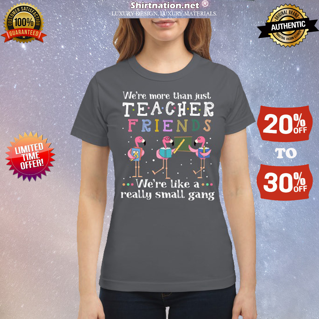 Flamingo we are more than just teacher we are like a small gang classic shirt