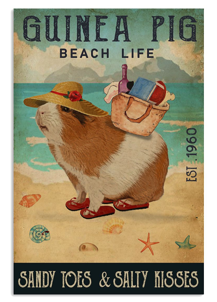 Guinea pig beach life sandy toes and salty kisses poster