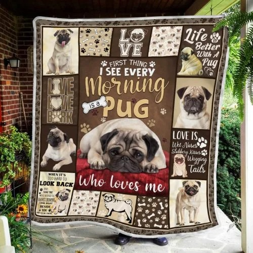 I see every morning is a pug blanket
