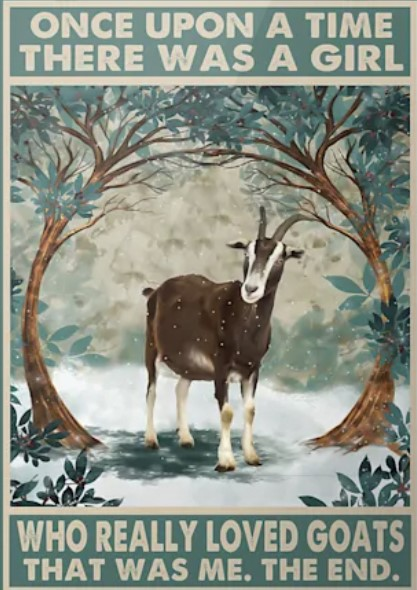 Once upon a time there was a girl who really loved goats poster