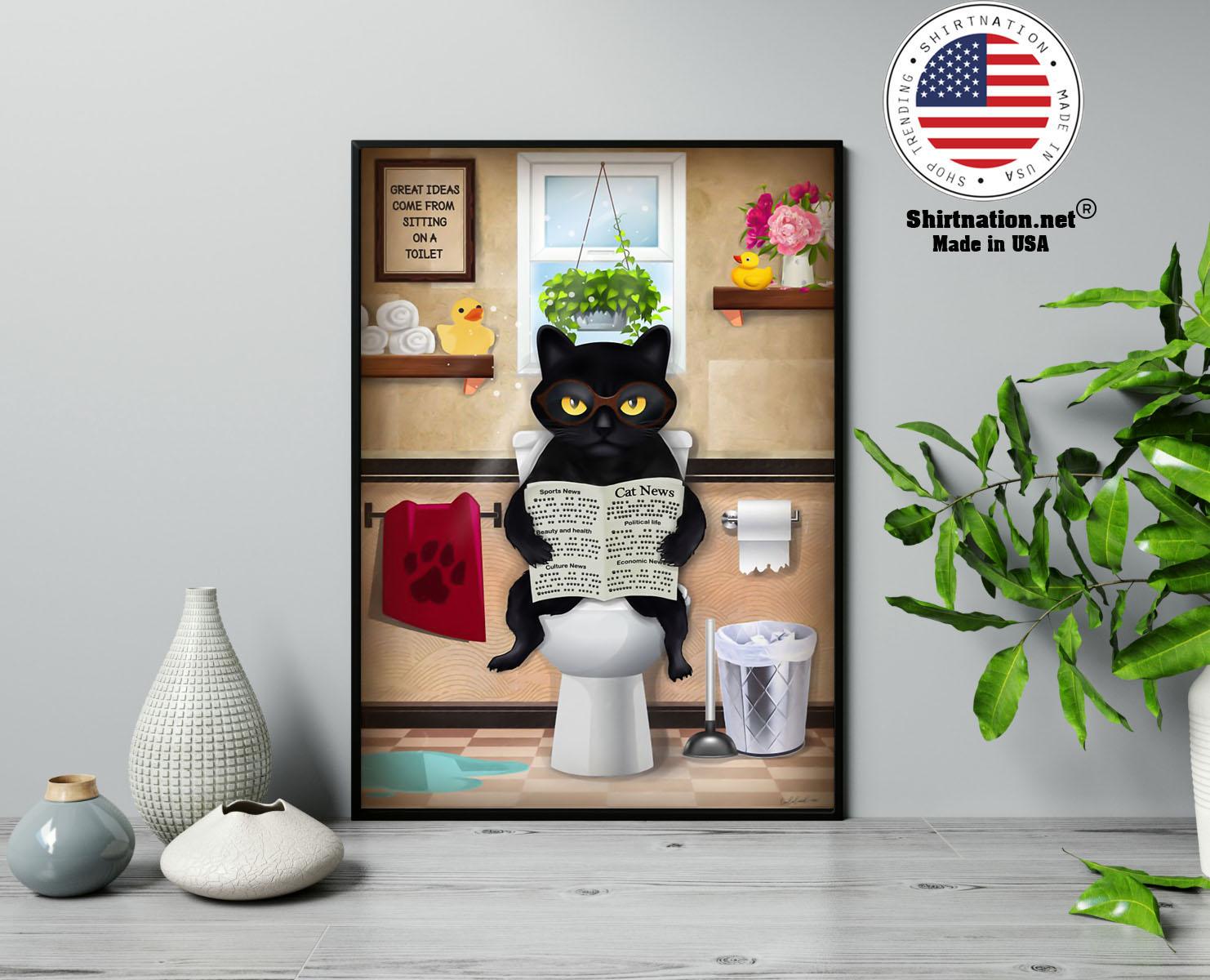 Cat toilet poster 13