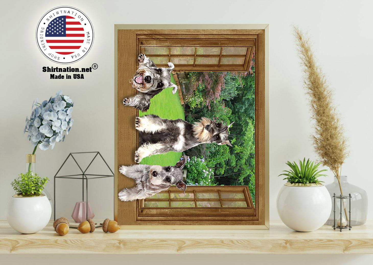 Schnauzer dog view window poster 11