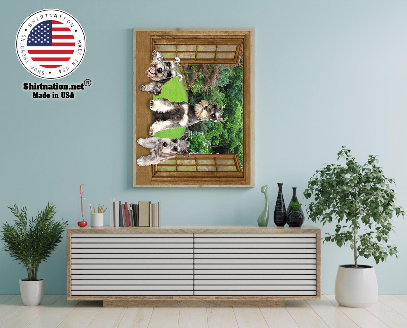 Schnauzer dog view window poster 12