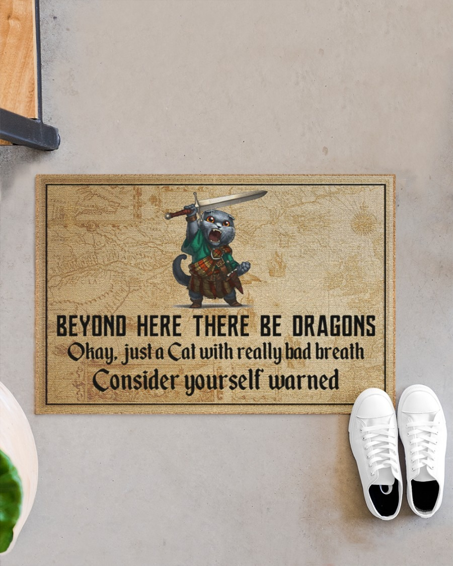 Cat beyond here there be dragons doormat3