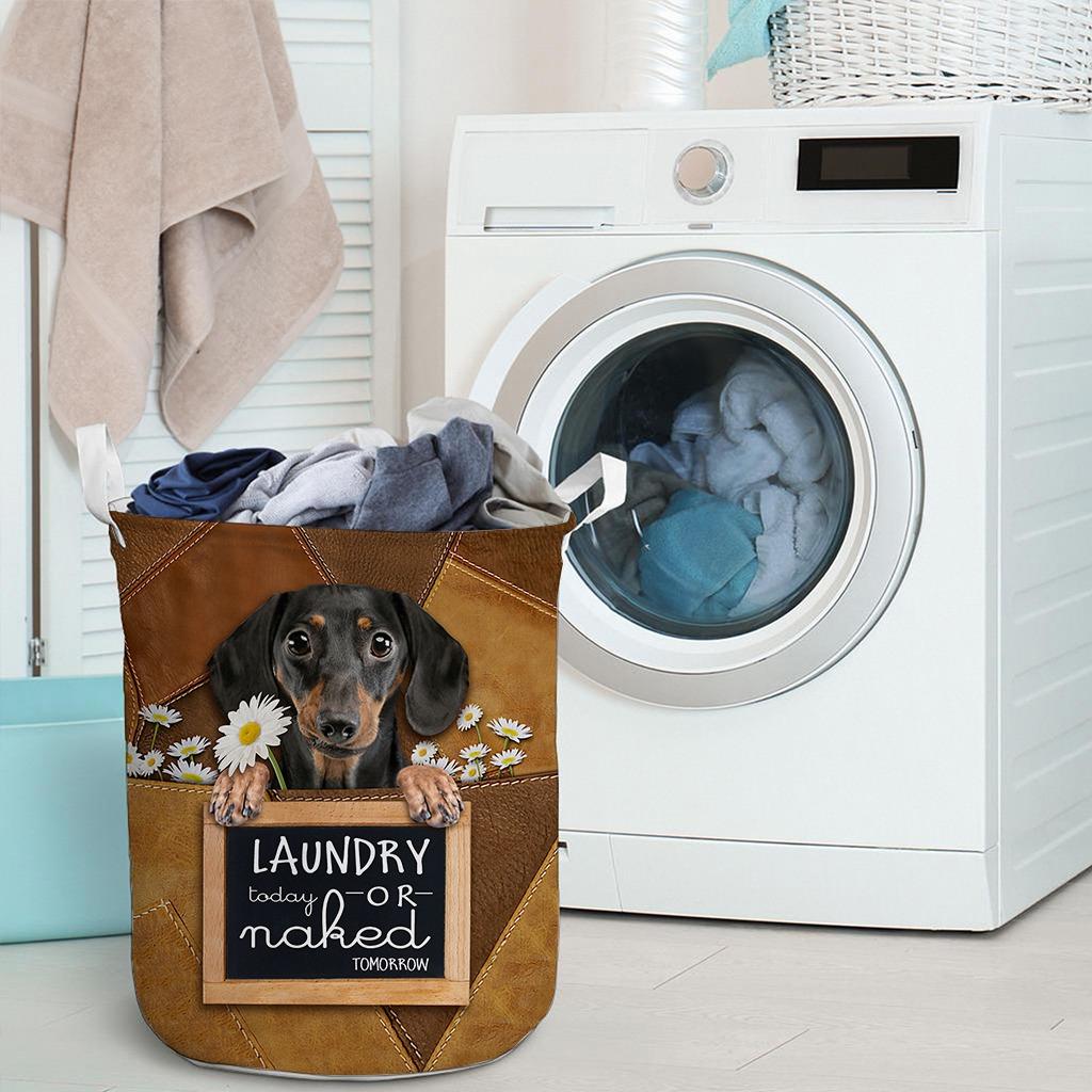 Dachshund Laundry today or naked tomorrow basket laundry3