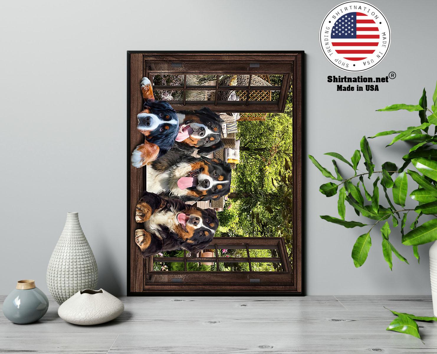 Bernese Mountain dog window 3d poster 13