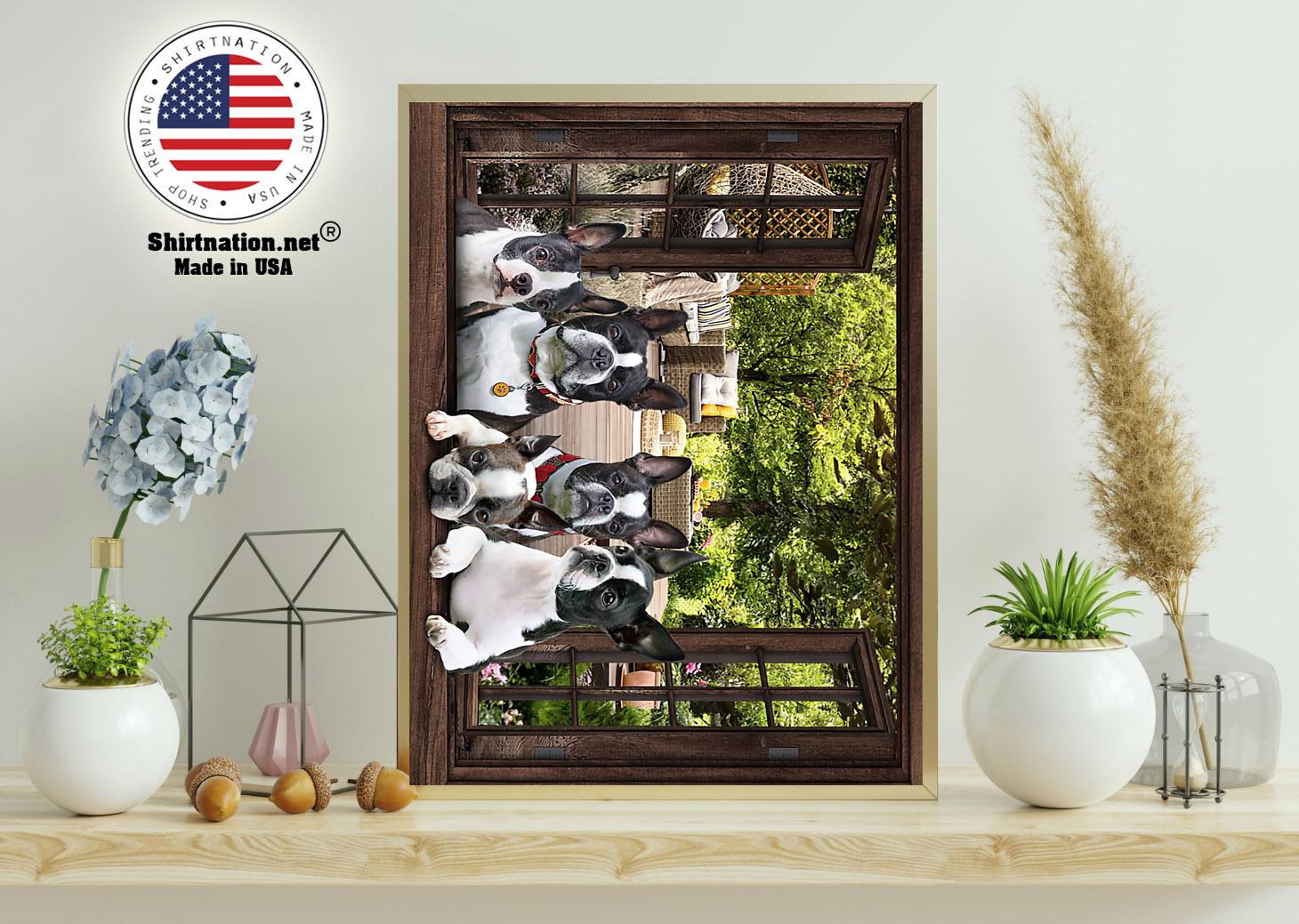 Boston Terrier window 3d poster 11