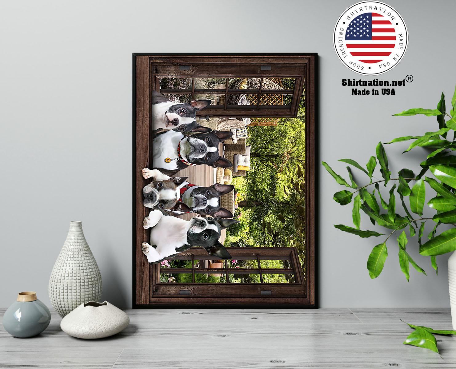 Boston Terrier window 3d poster 13