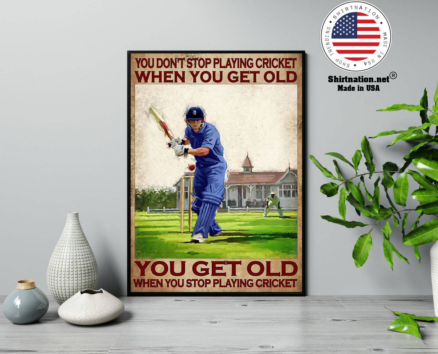 You dont stop playing cricket when you get old poster 13