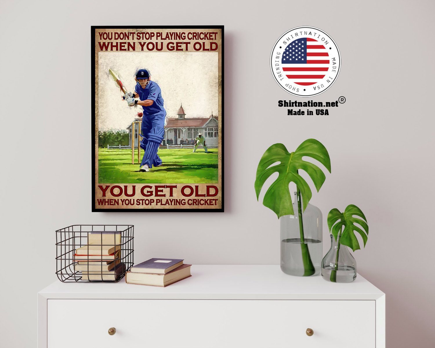 You dont stop playing cricket when you get old poster 14