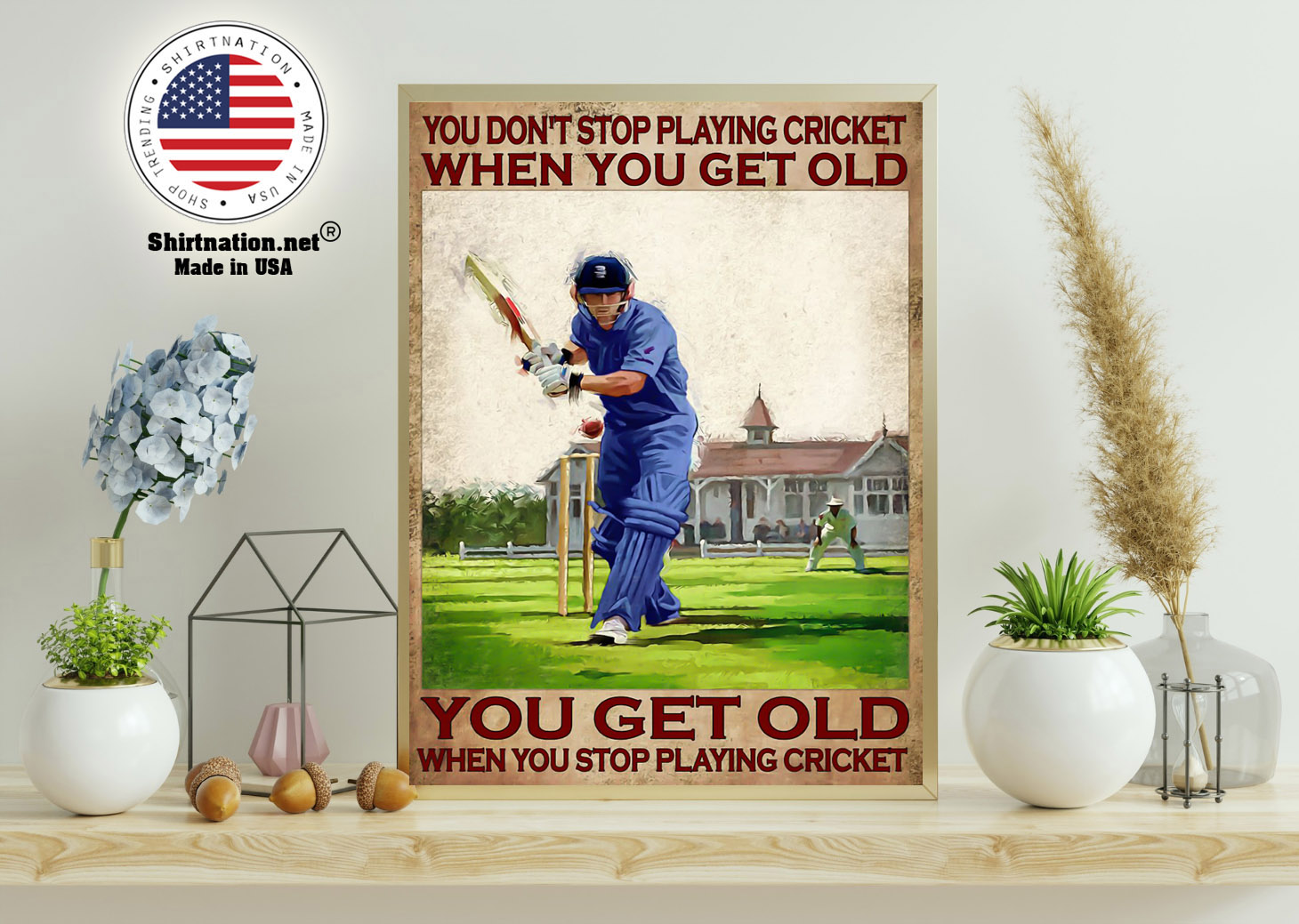 You dont stop playing cricket when you get old poster 15