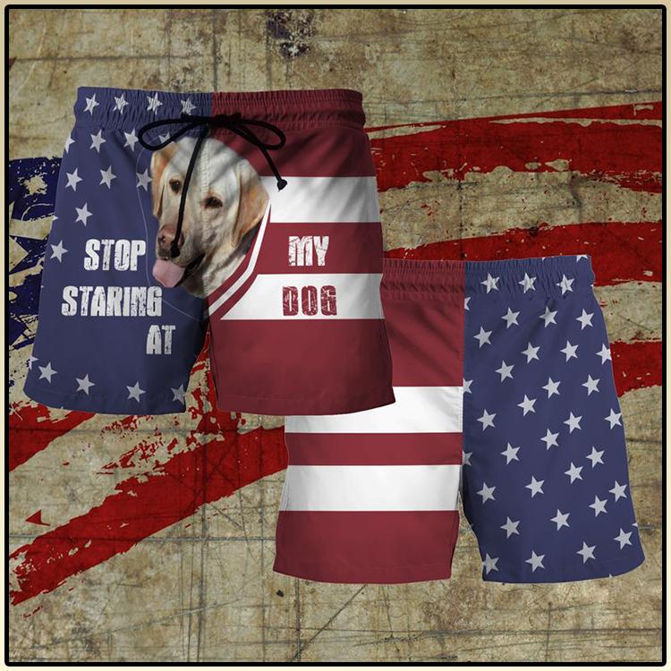 Amercian flag Labrador Retriever stop staring at my dog 3d Short