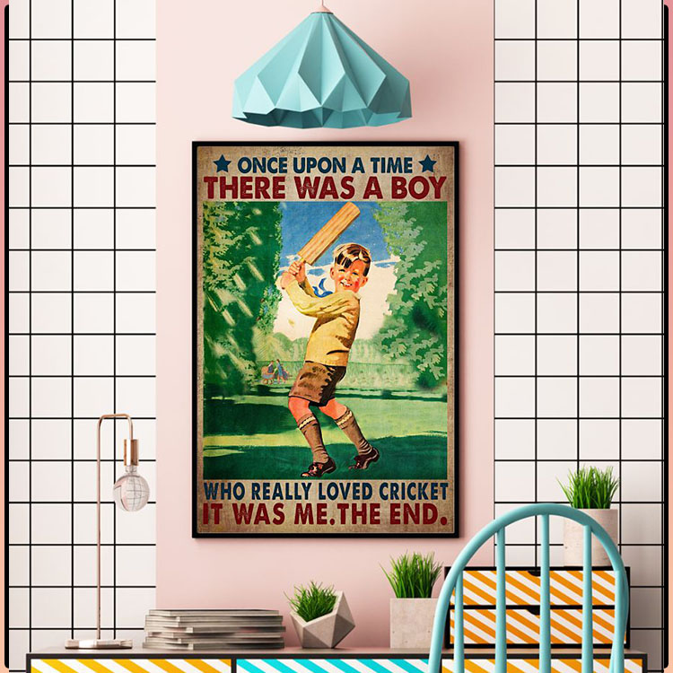 Once upon a time there was a boy who really loved cricket poster4